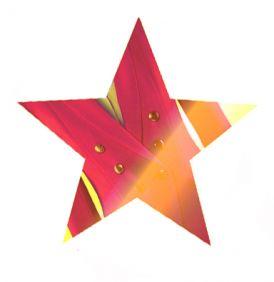 Żakiet w stylu gwiazd